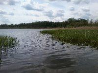 Jezioro Liwno (Zabór Du¿y)