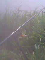 Leszcz z gruntu na jeziorze