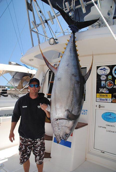 Organizujemy kilkudniowe rejsy w�dkarskie na Wyspach Kanaryjskich. Olbrzymie ryby ju� dost�pne po 5 godzinnym locie Zakwaterowanie na jachcie motorowym i nielimitow…