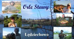 Agroturystyka ORLE STAWY Lêdziechowo (Lêdziechowo 17A)