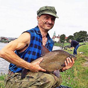 Grzegorz  - bluehornet